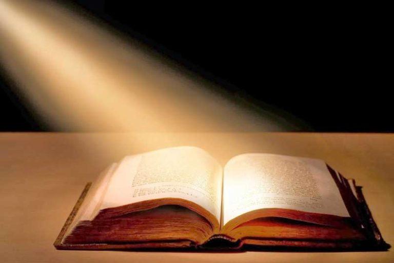 Biblia en un año